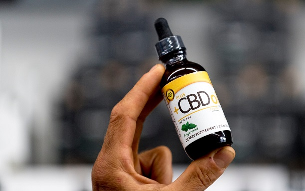 CBD Oil Legal in Italy